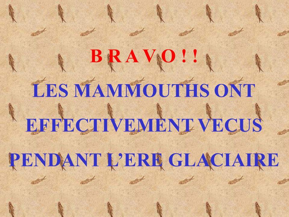 PENDANT L'ERE GLACIAIRE