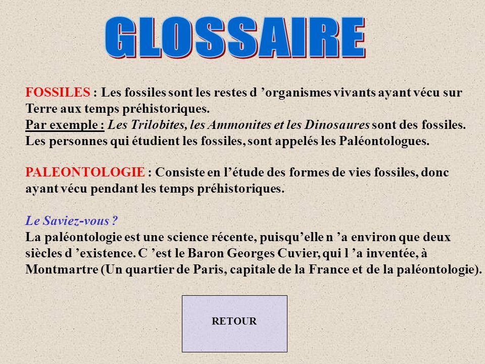 GLOSSAIRE FOSSILES : Les fossiles sont les restes d 'organismes vivants ayant vécu sur. Terre aux temps préhistoriques.