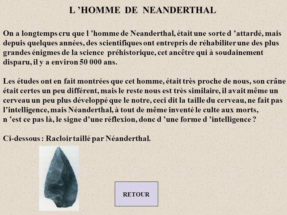 L 'HOMME DE NEANDERTHAL