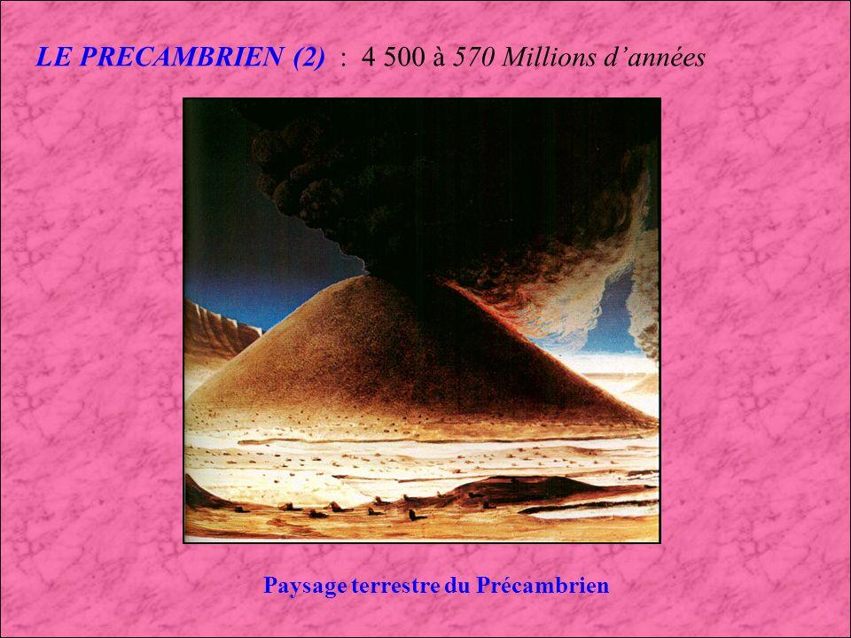 Paysage terrestre du Précambrien