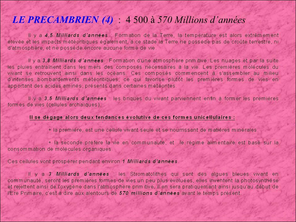 LE PRECAMBRIEN (4) : 4 500 à 570 Millions d'années