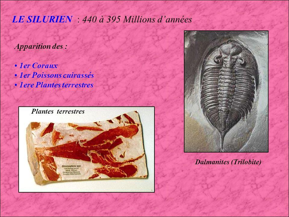 LE SILURIEN : 440 à 395 Millions d'années