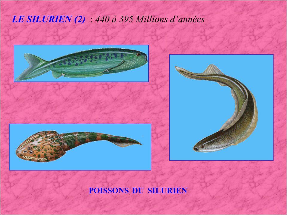 LE SILURIEN (2) : 440 à 395 Millions d'années