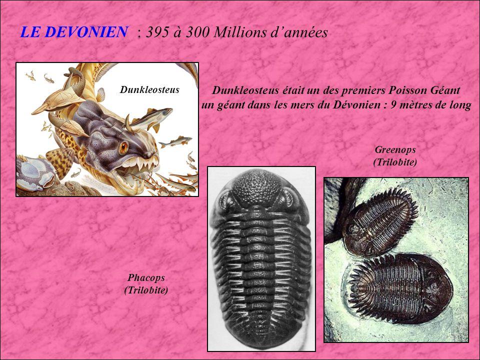 LE DEVONIEN : 395 à 300 Millions d'années