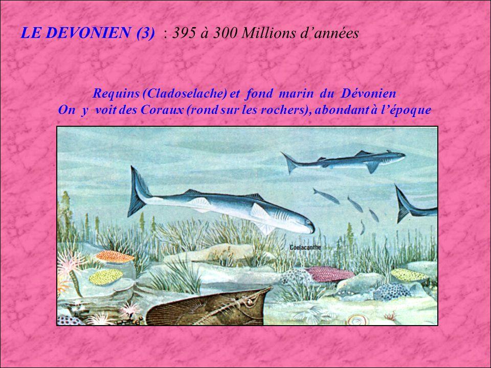 LE DEVONIEN (3) : 395 à 300 Millions d'années