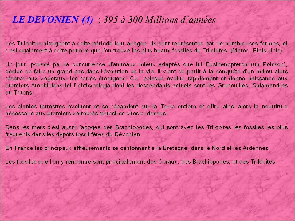 LE DEVONIEN (4) : 395 à 300 Millions d'années