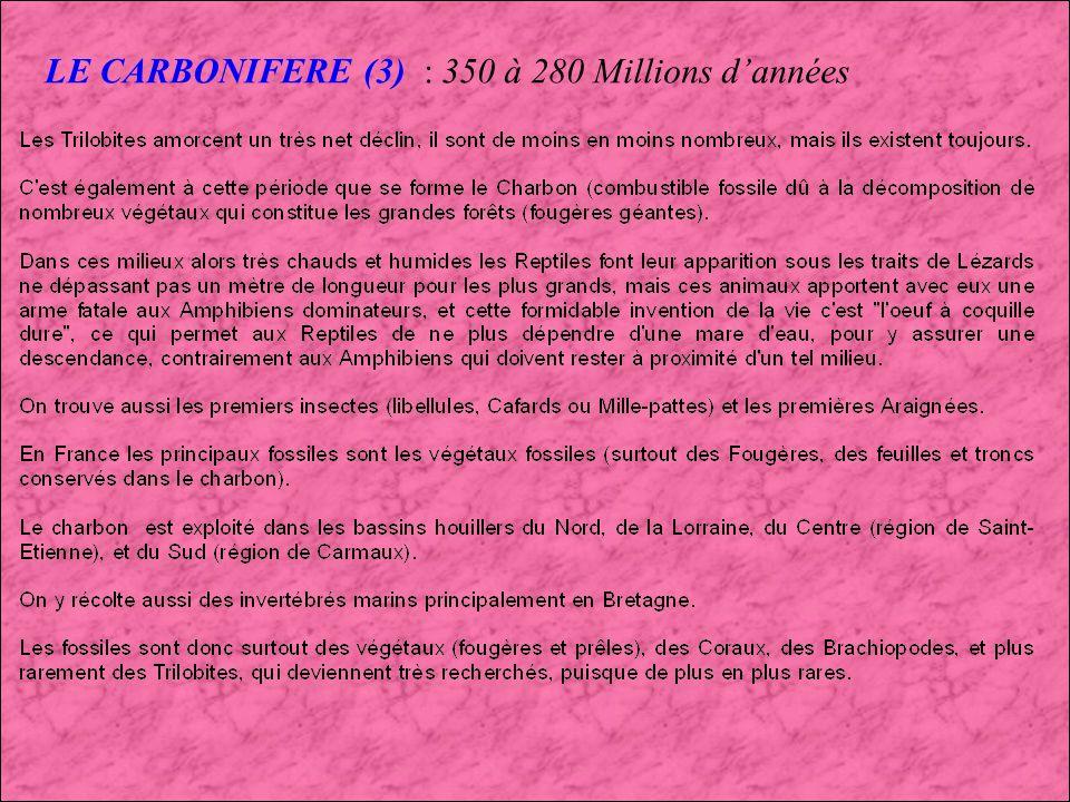 LE CARBONIFERE (3) : 350 à 280 Millions d'années