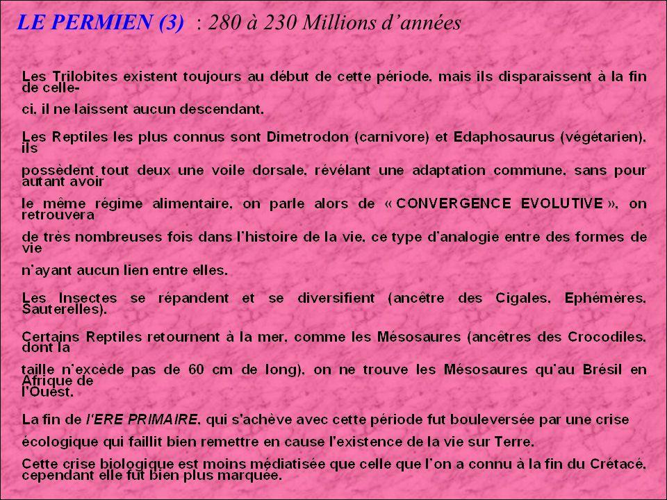 LE PERMIEN (3) : 280 à 230 Millions d'années
