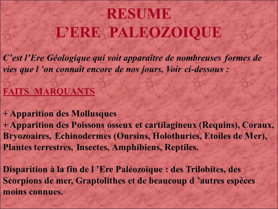 RESUME L'ERE PALEOZOIQUE