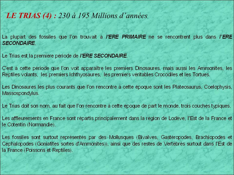 LE TRIAS (4) : 230 à 195 Millions d'années