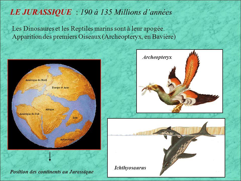 LE JURASSIQUE : 190 à 135 Millions d'années