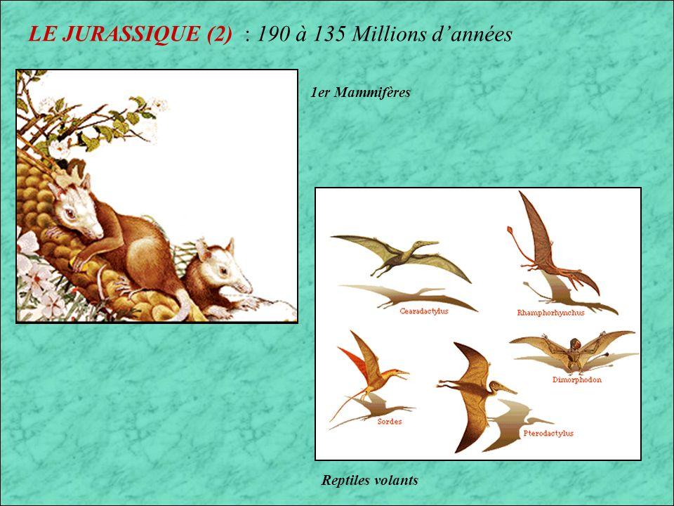 LE JURASSIQUE (2) : 190 à 135 Millions d'années