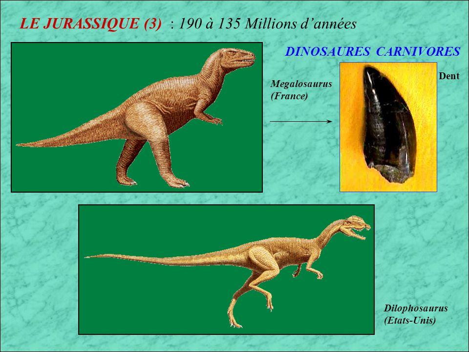 LE JURASSIQUE (3) : 190 à 135 Millions d'années