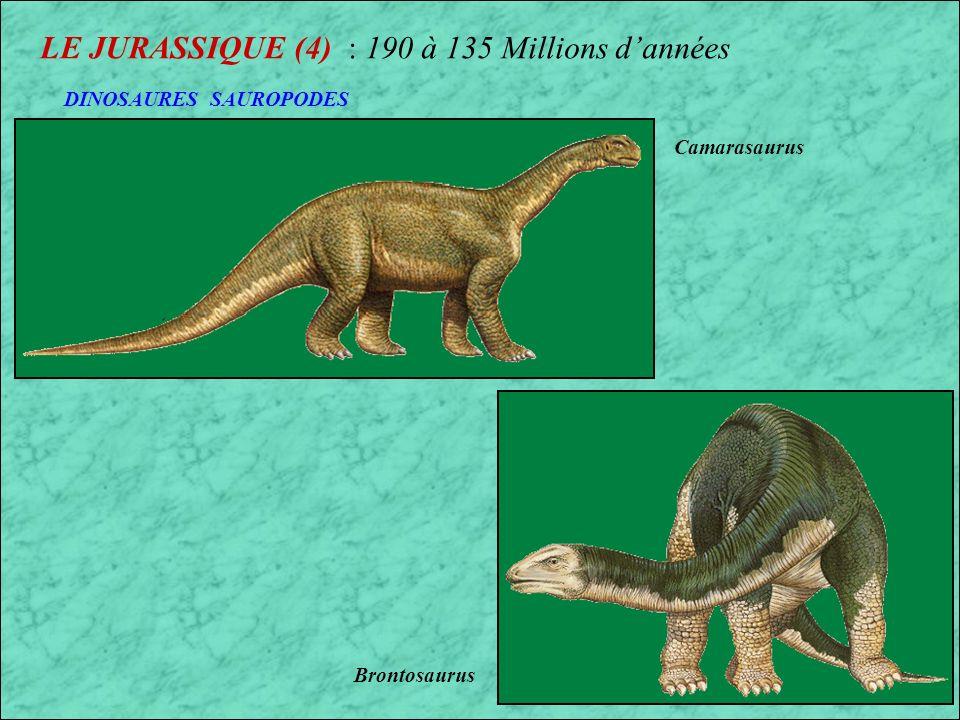 LE JURASSIQUE (4) : 190 à 135 Millions d'années