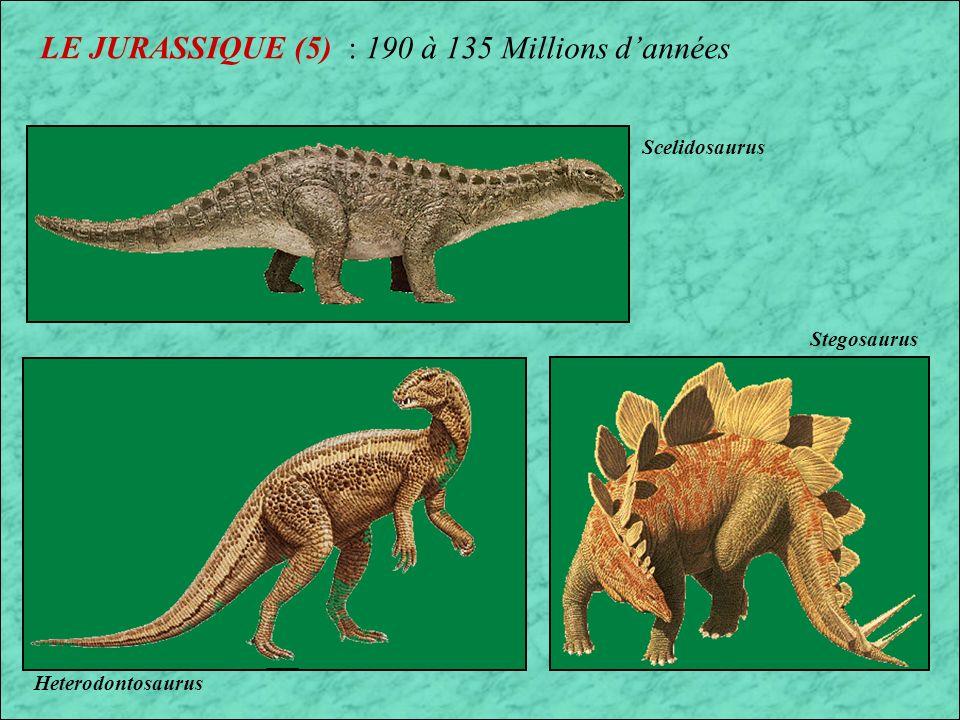 LE JURASSIQUE (5) : 190 à 135 Millions d'années