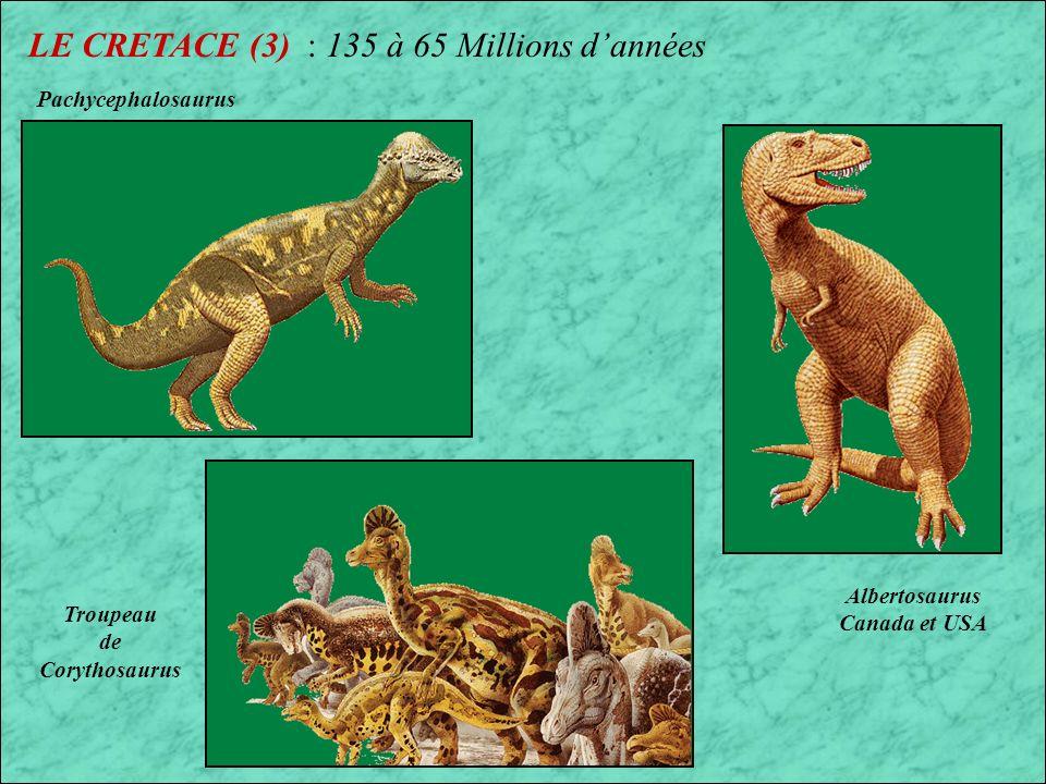 LE CRETACE (3) : 135 à 65 Millions d'années