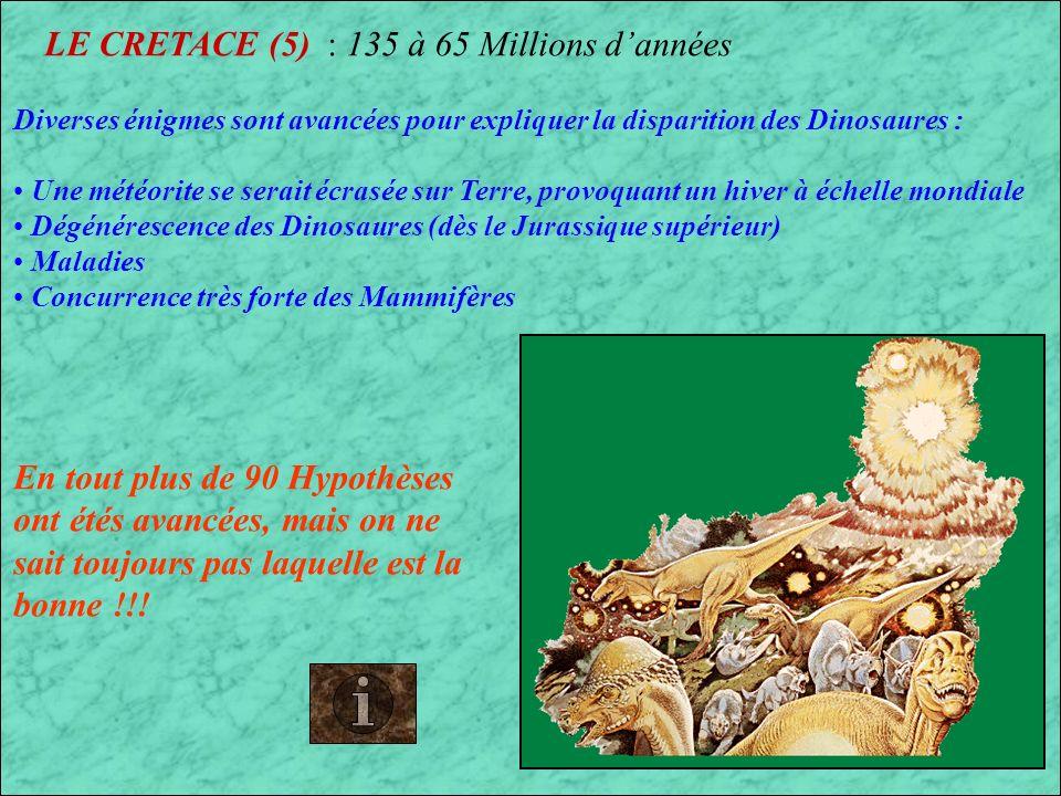 LE CRETACE (5) : 135 à 65 Millions d'années