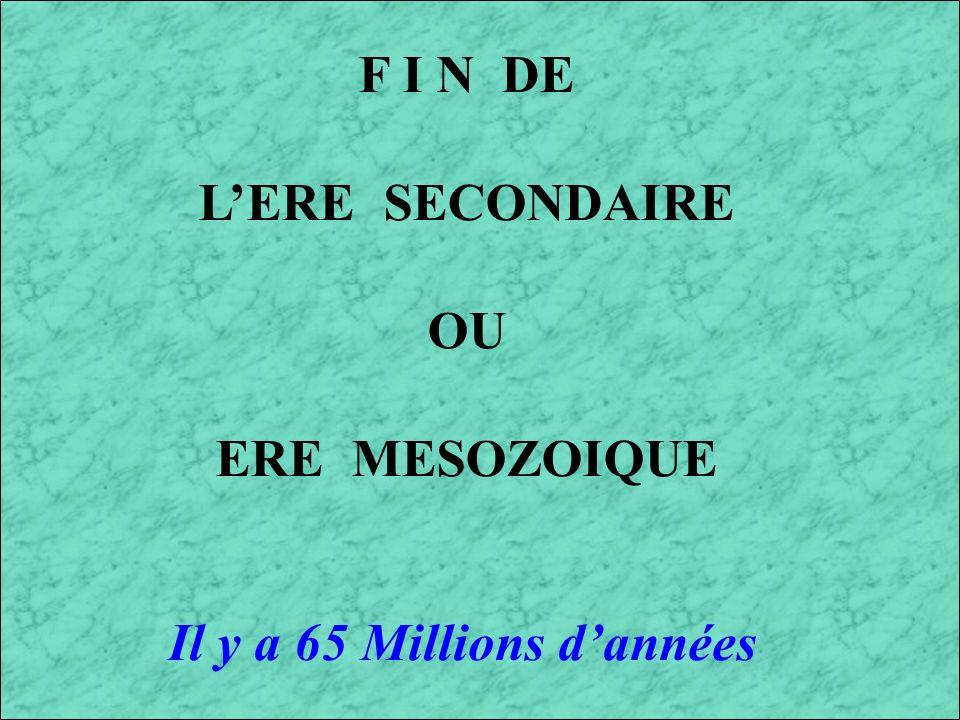 F I N DE L'ERE SECONDAIRE OU ERE MESOZOIQUE Il y a 65 Millions d'années