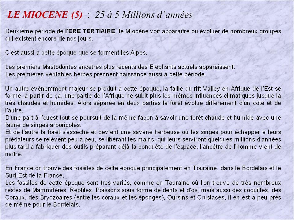 LE MIOCENE (5) : 25 à 5 Millions d'années