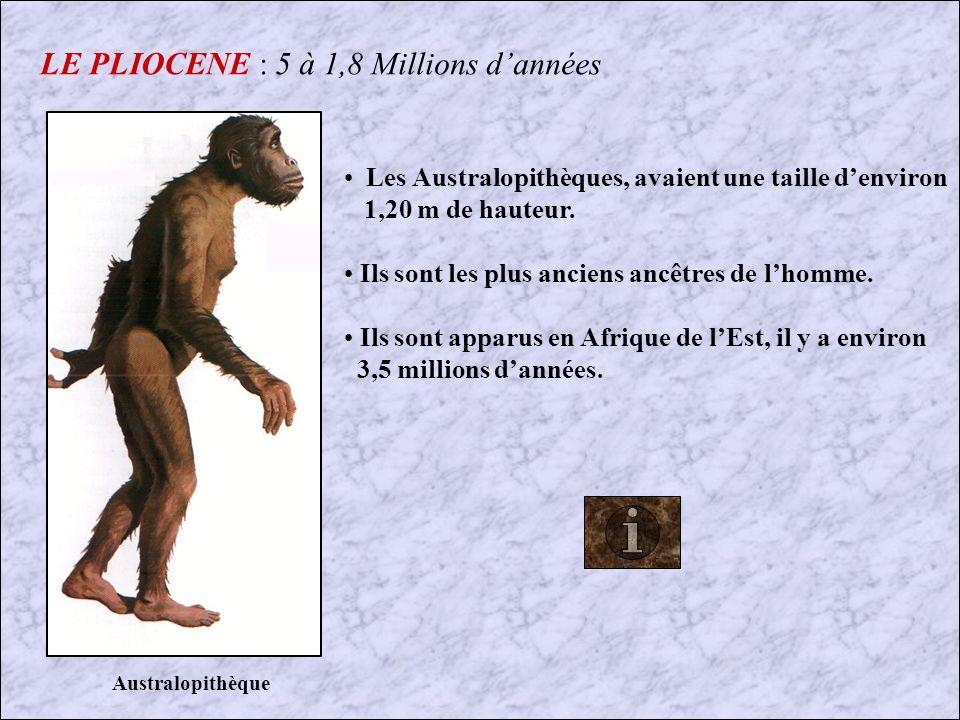 LE PLIOCENE : 5 à 1,8 Millions d'années