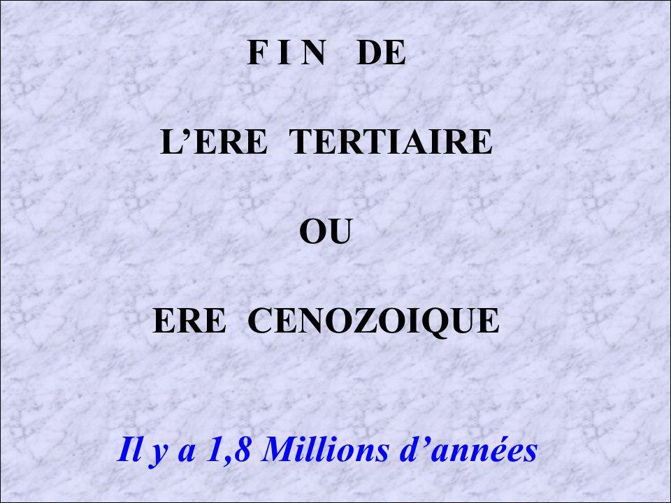 F I N DE L'ERE TERTIAIRE OU ERE CENOZOIQUE Il y a 1,8 Millions d'années