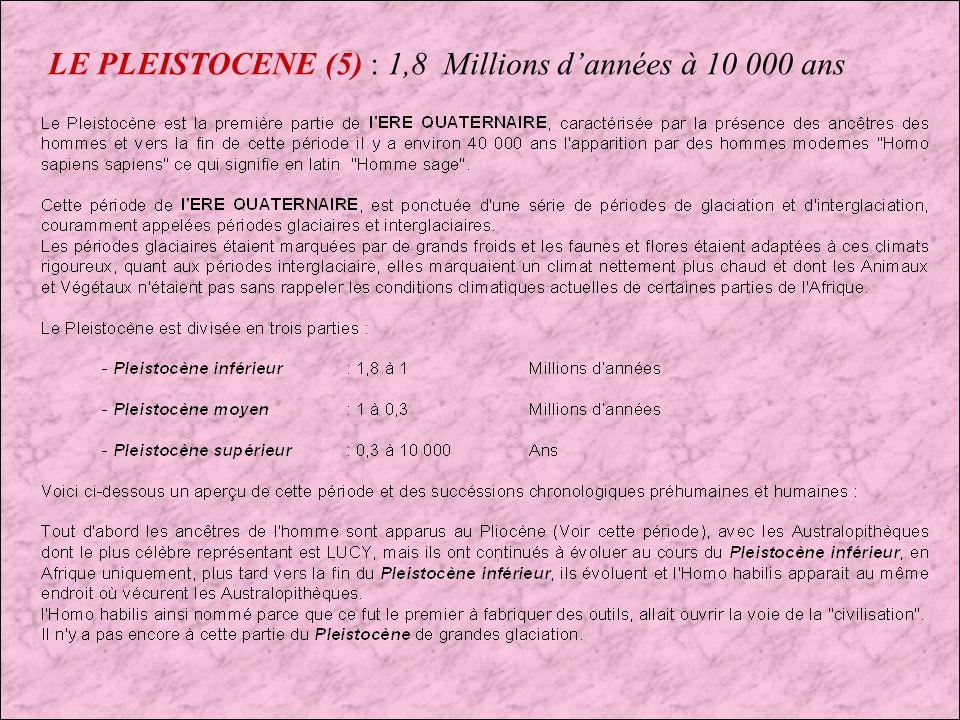 LE PLEISTOCENE (5) : 1,8 Millions d'années à 10 000 ans