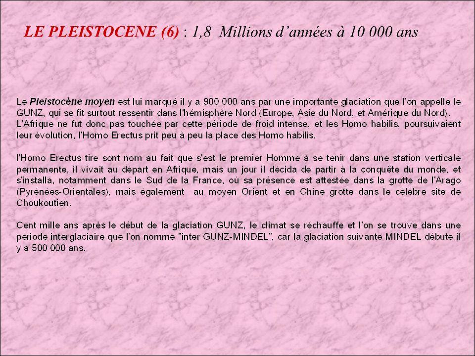 LE PLEISTOCENE (6) : 1,8 Millions d'années à 10 000 ans