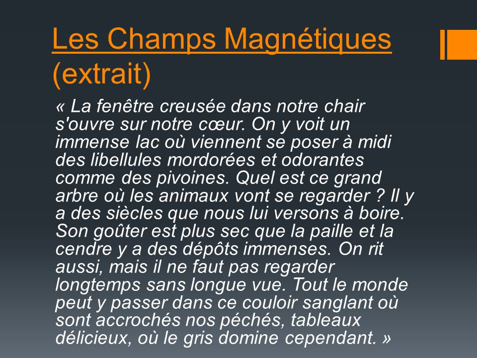 Les Champs Magnétiques (extrait)
