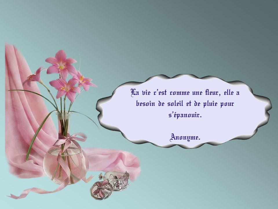 La vie c'est comme une fleur, elle a besoin de soleil et de pluie pour s'épanouir.