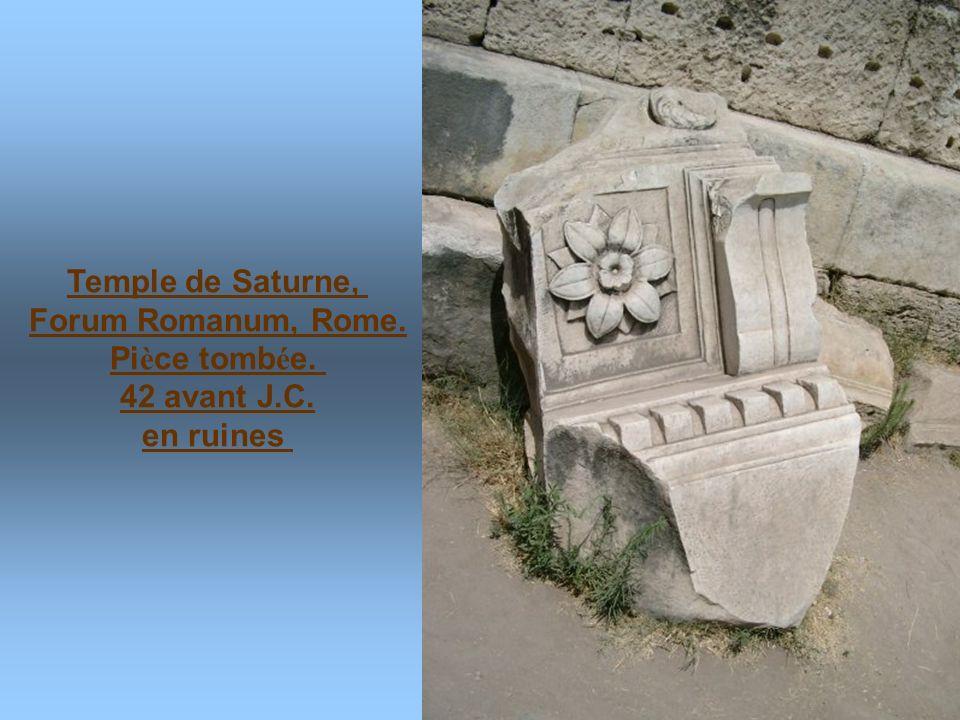 Forum Romanum, Rome. Pièce tombée.