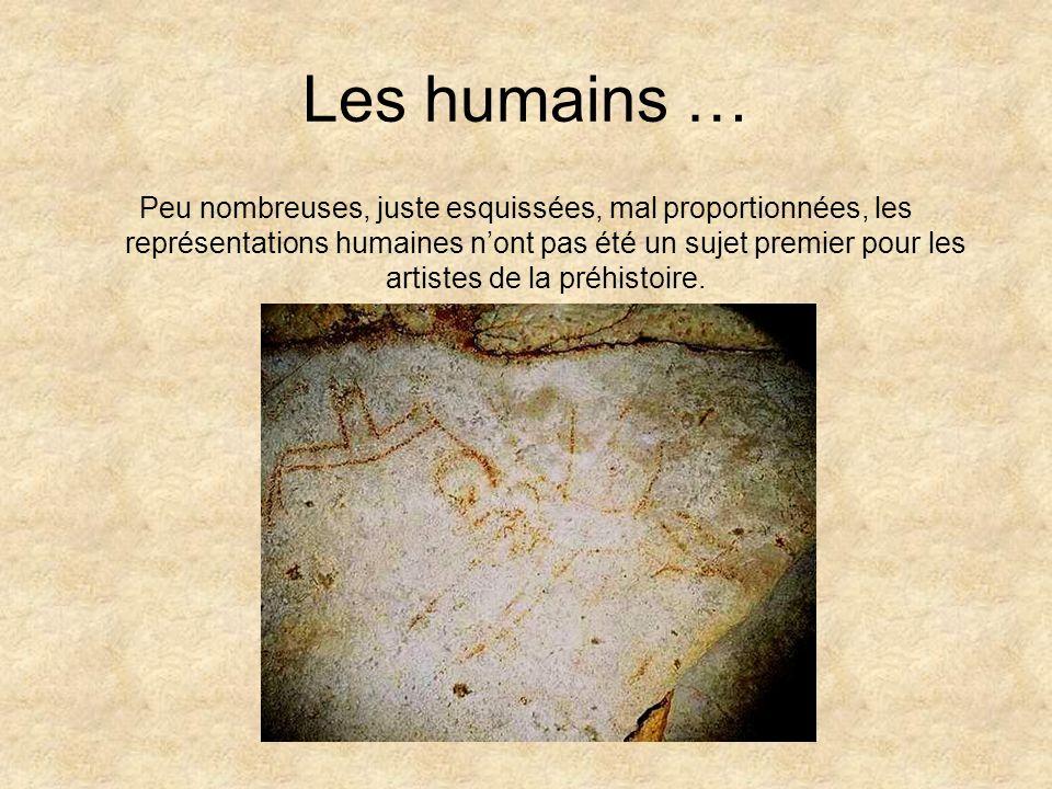 Les humains …