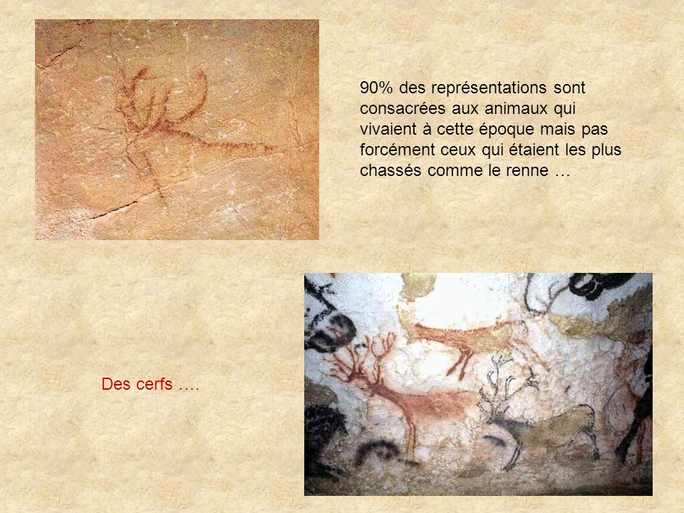 90% des représentations sont consacrées aux animaux qui vivaient à cette époque mais pas forcément ceux qui étaient les plus chassés comme le renne …