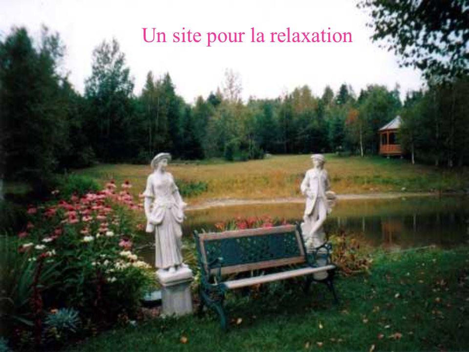 Un site pour la relaxation