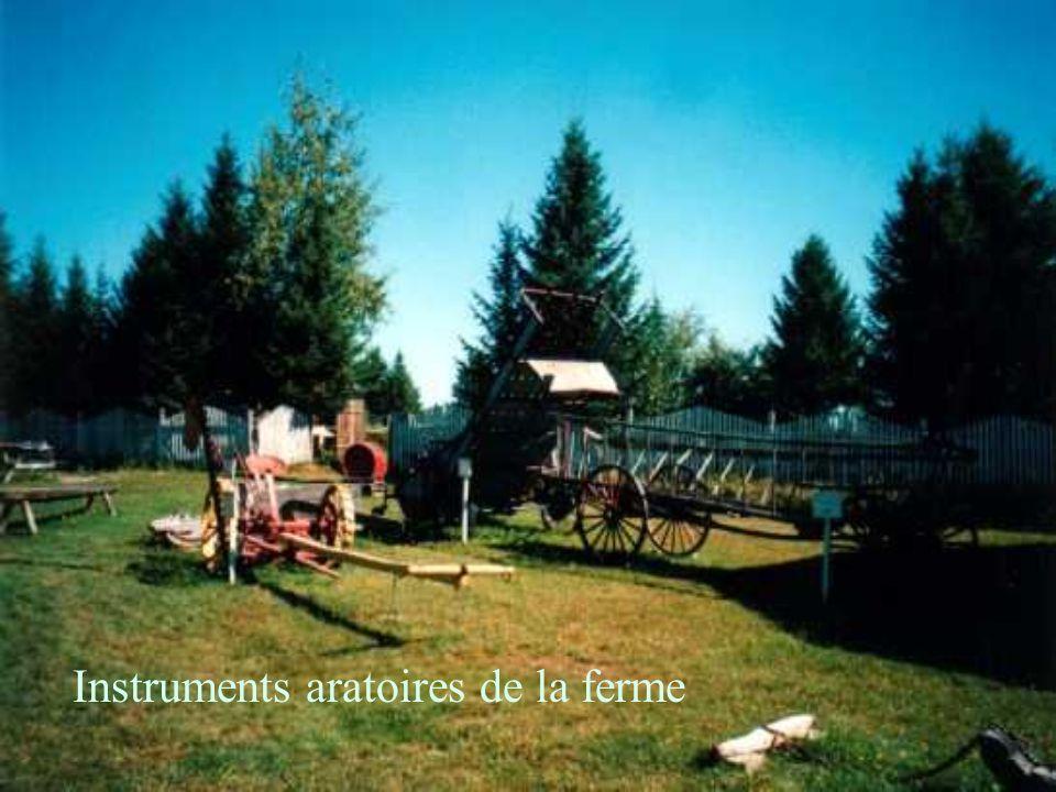 Instruments aratoires de la ferme