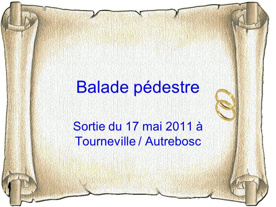 Sortie du 17 mai 2011 à Tourneville / Autrebosc