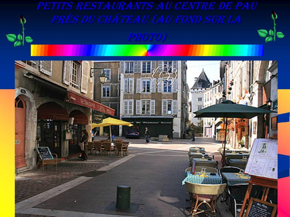 Petits restaurants au Centre de Pau près du Château (au fond sur la photo)