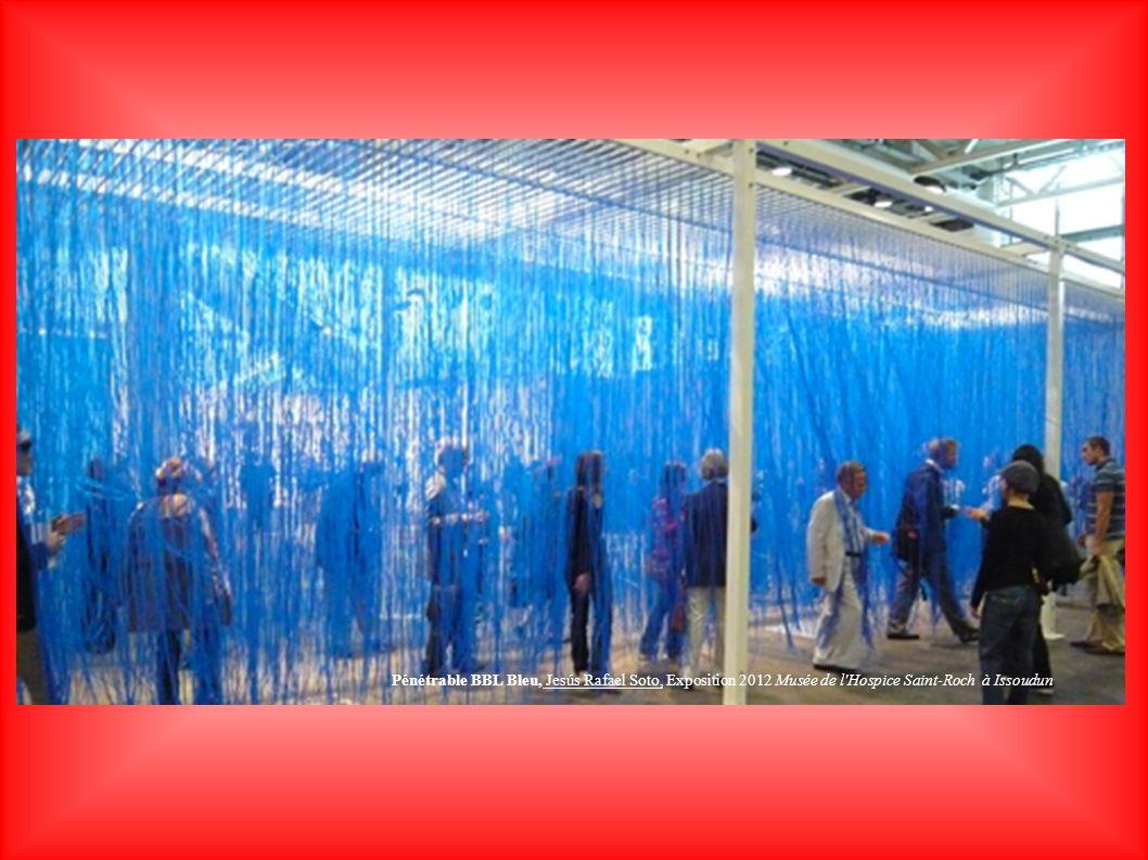 Pénétrable BBL Bleu, Jesús Rafael Soto, Exposition 2012 Musée de l Hospice Saint-Roch à Issoudun