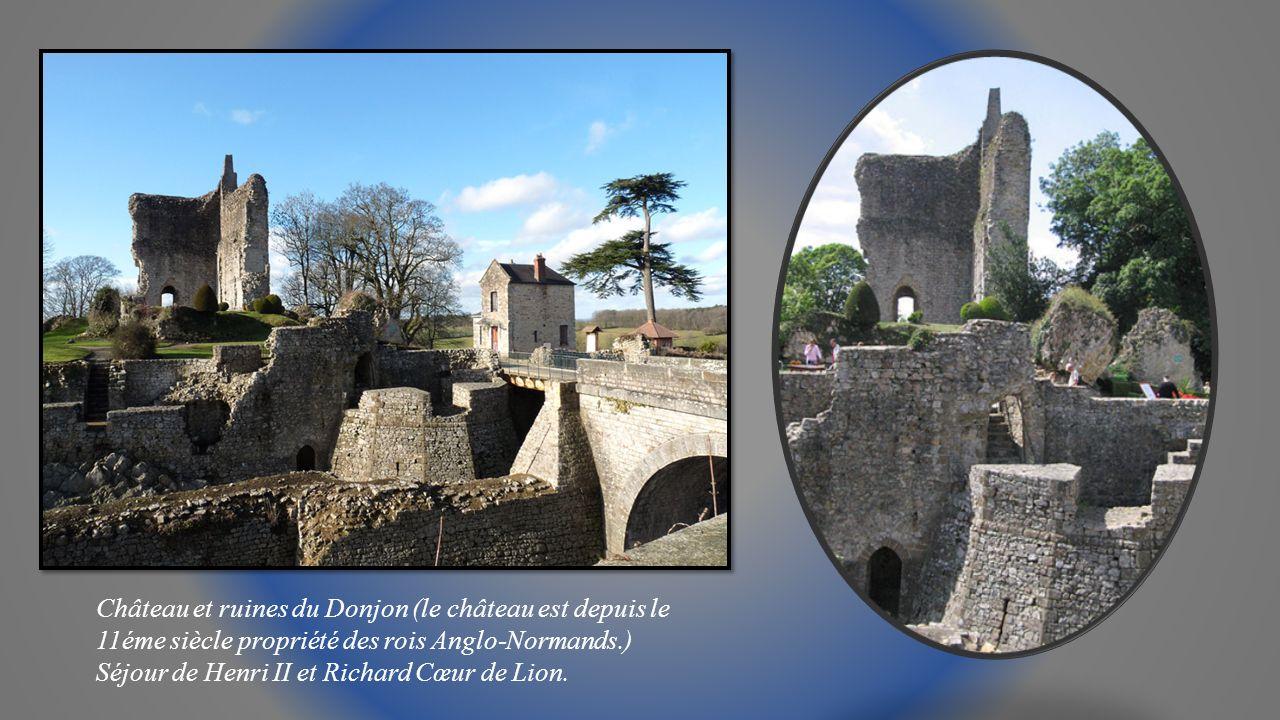 Château et ruines du Donjon (le château est depuis le