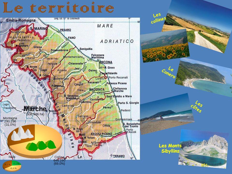 Le territoire Les collines Le Conero Les côtes Les Monts Sibyllins