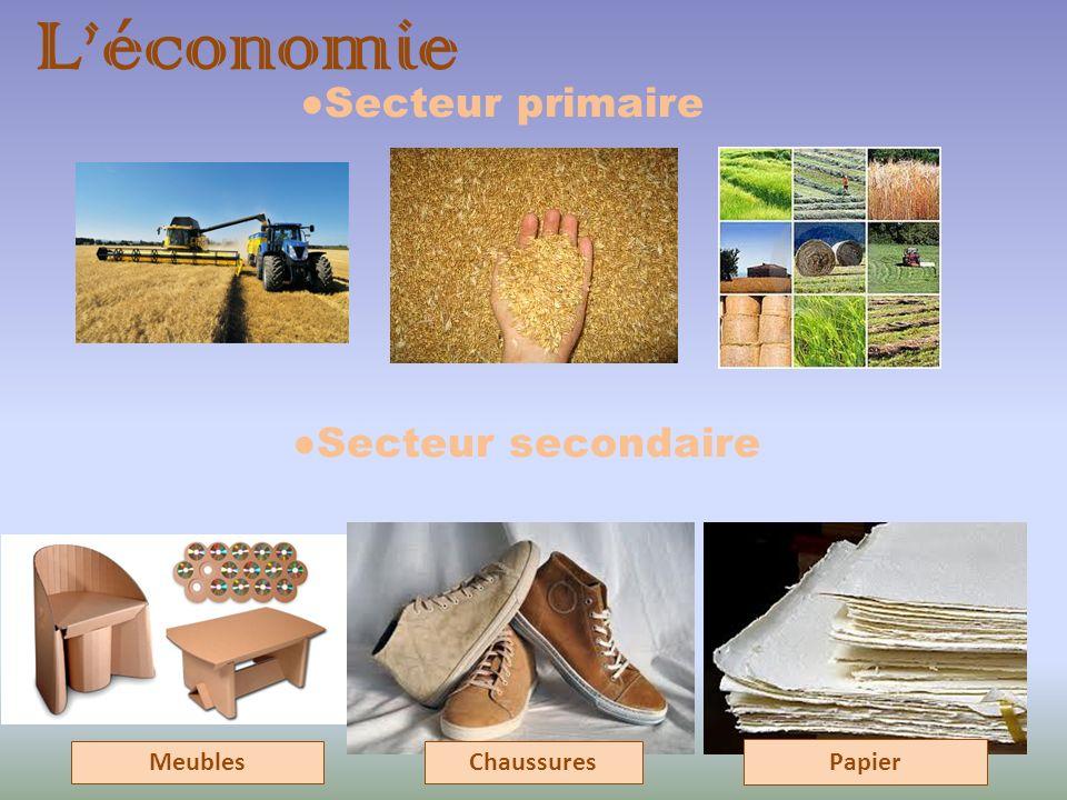 L'économie ●Secteur secondaire ●Secteur primaire Meubles Chaussures