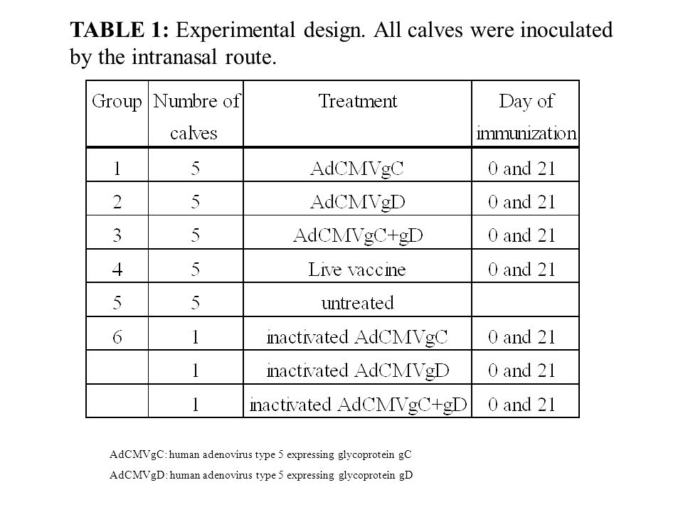 TABLE 1: Experimental design