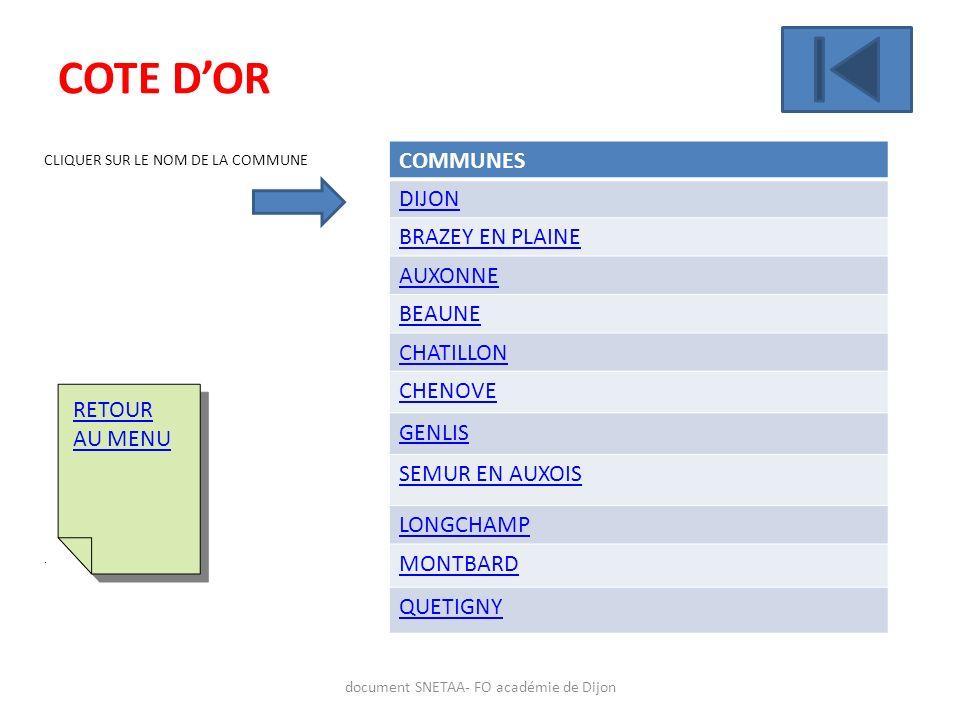 document SNETAA- FO académie de Dijon