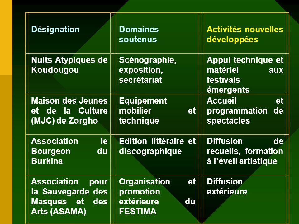 Désignation Domaines soutenus. Activités nouvelles développées. Nuits Atypiques de Koudougou. Scénographie, exposition, secrétariat.