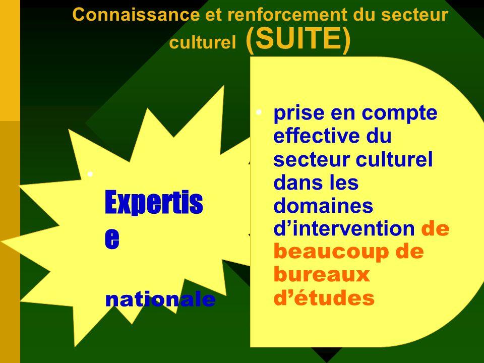 Connaissance et renforcement du secteur culturel (SUITE)