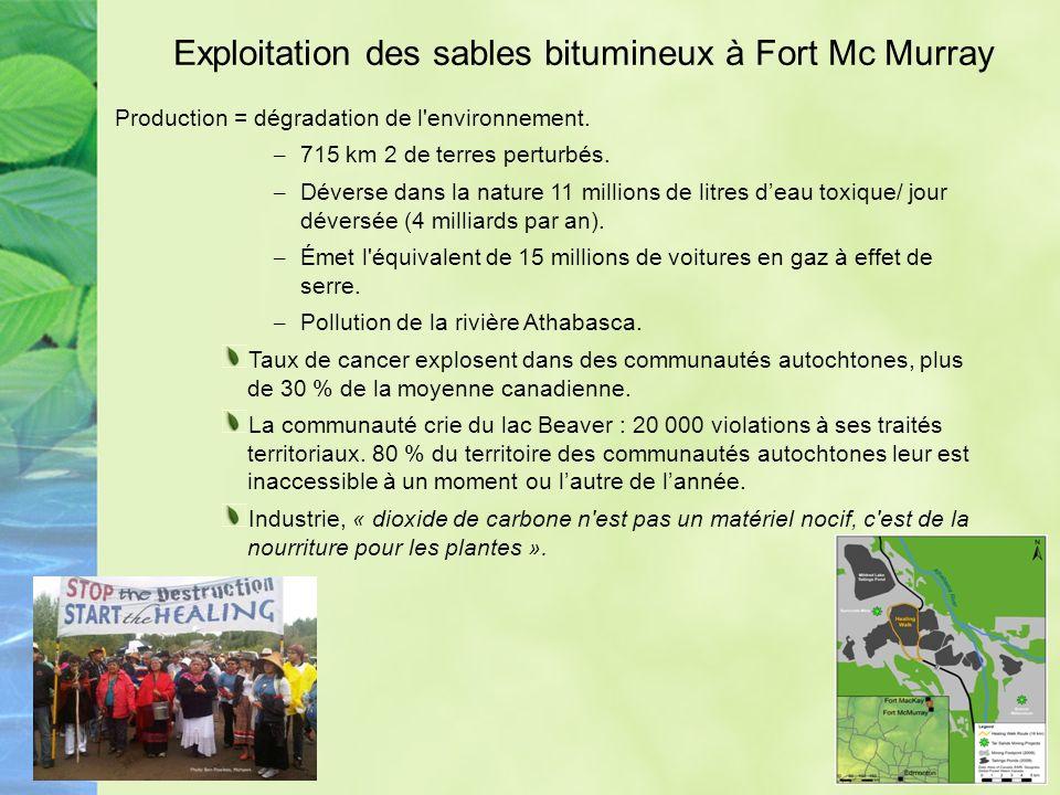 Exploitation des sables bitumineux à Fort Mc Murray