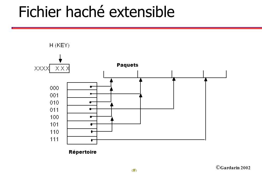 Fichier haché extensible
