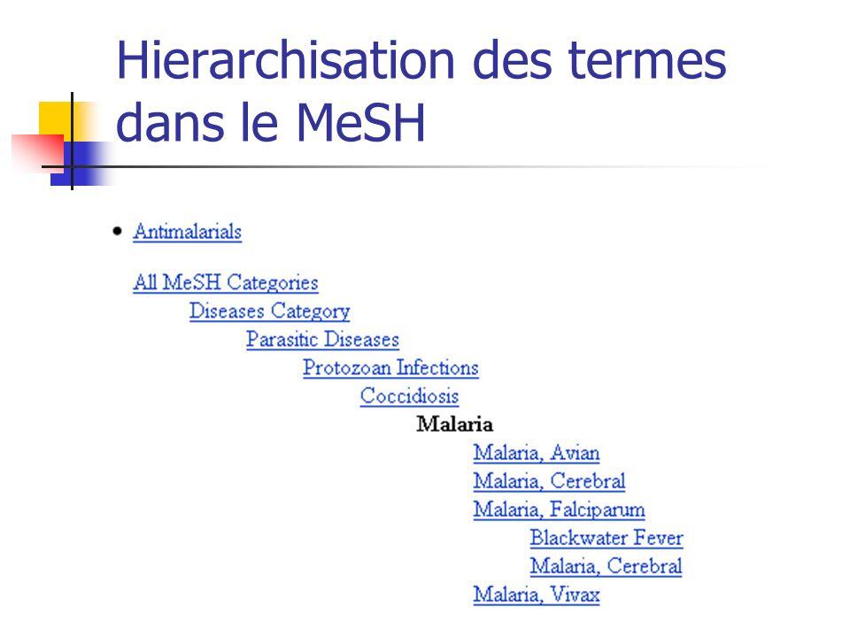 Hierarchisation des termes dans le MeSH