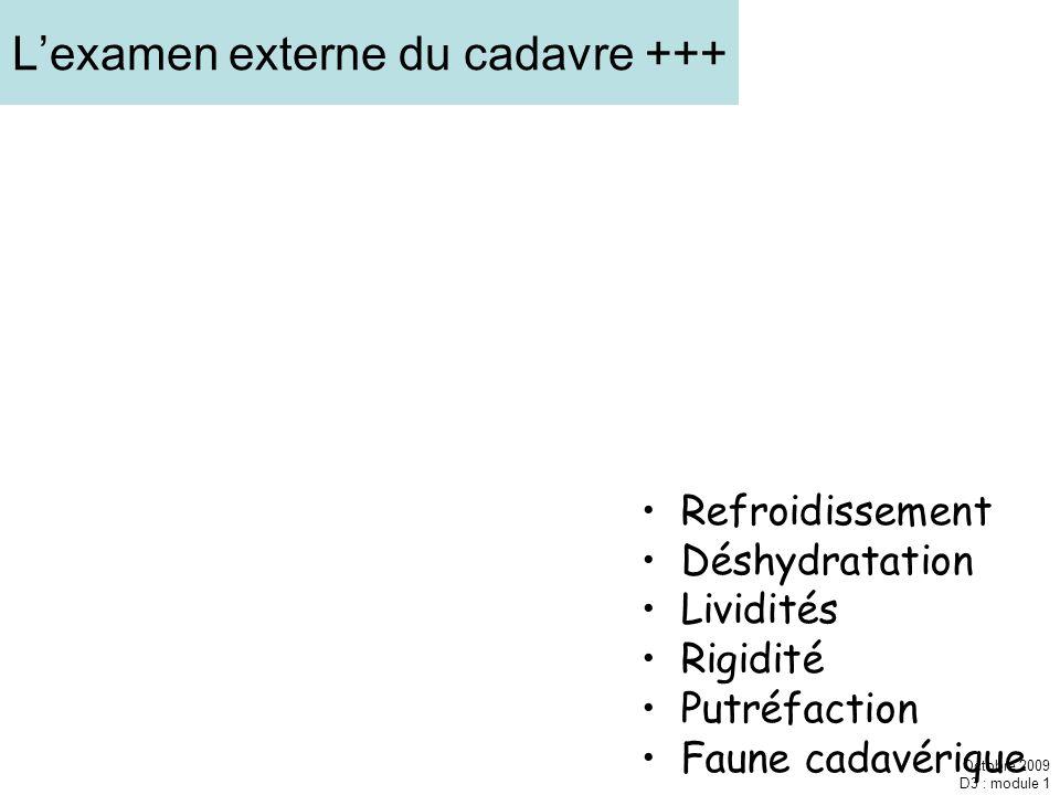 L'examen externe du cadavre +++