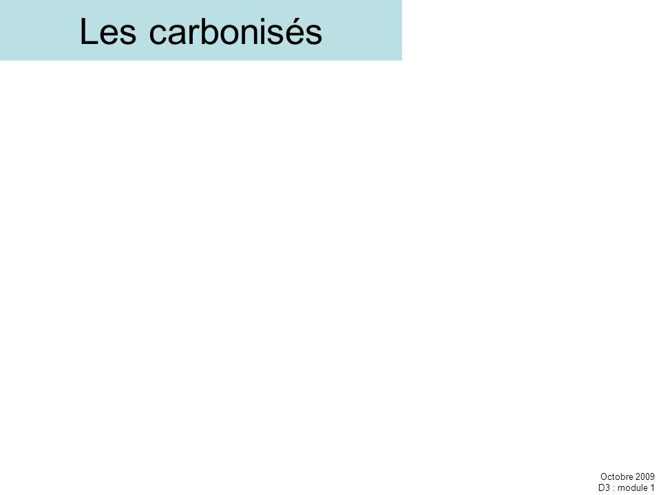 Les carbonisés Octobre 2009 D3 : module 1
