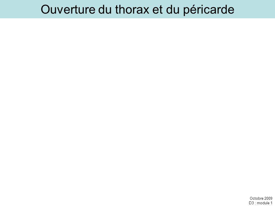 Ouverture du thorax et du péricarde
